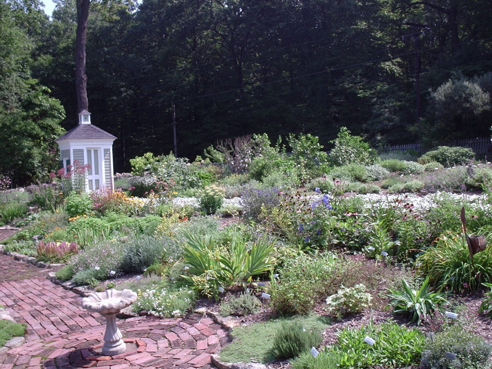 Herb Garden Design Advice From The Herb Lady