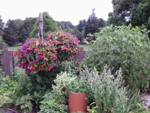 Old RG Herb Garden