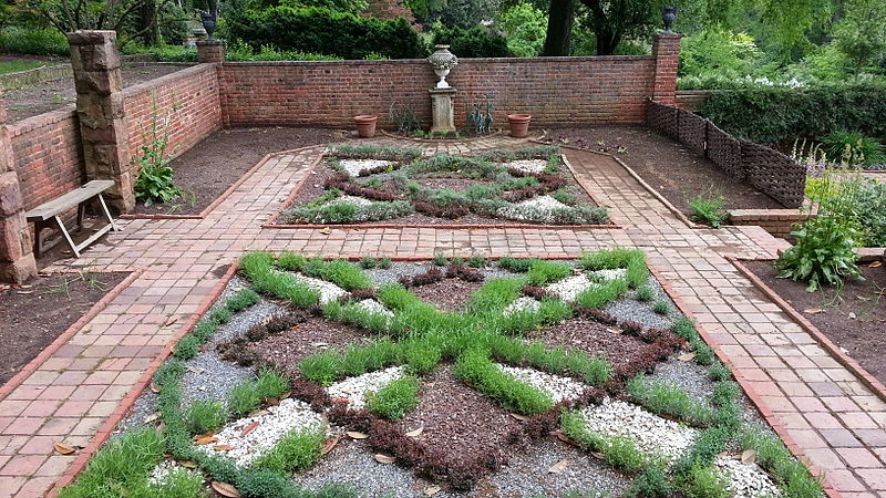Germander a flexible herb advice from the herb lady for Knot garden designs herbs